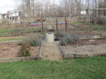 garden-daybook-117130