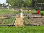 May-mulched-mulched-path-2-small