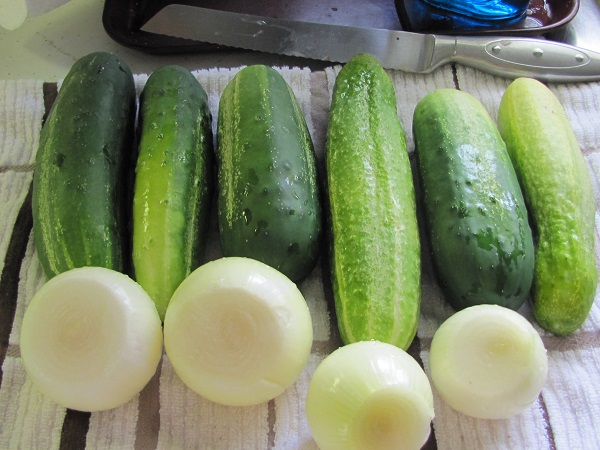 cukes and onions for pickles small