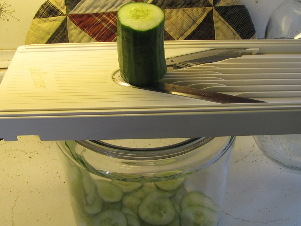 Mrs. Chappo's pickles being sliced smal