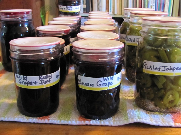Wild grape Jelly and jalapenos 2013 Sept. small