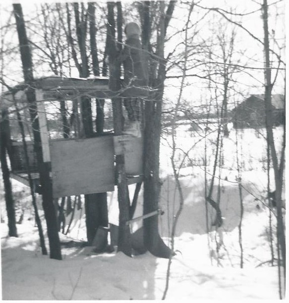 1964 treehouse
