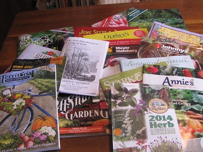 seed catalogs 2014 400