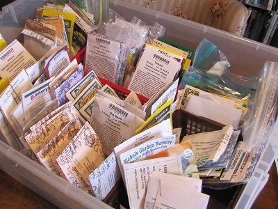 seed packets 400
