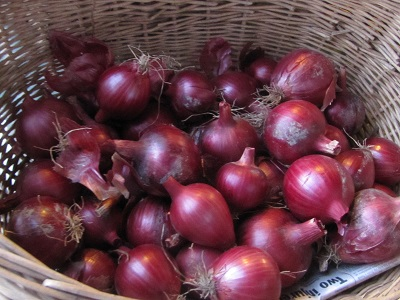 red onions 400